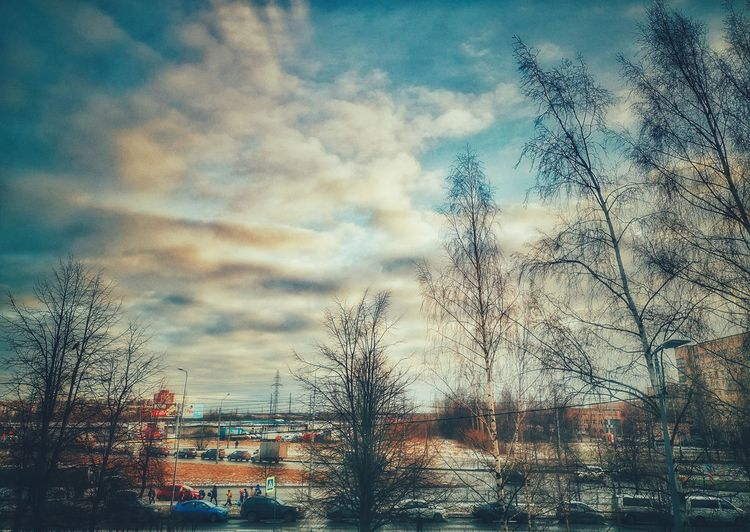Bare trees and buildings against sky during winter