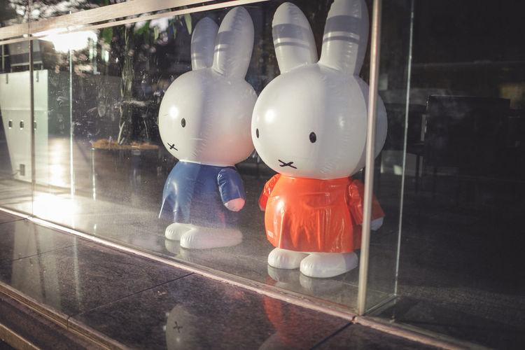 Day Indoors  Japan No People Rabbit Rabbits Window
