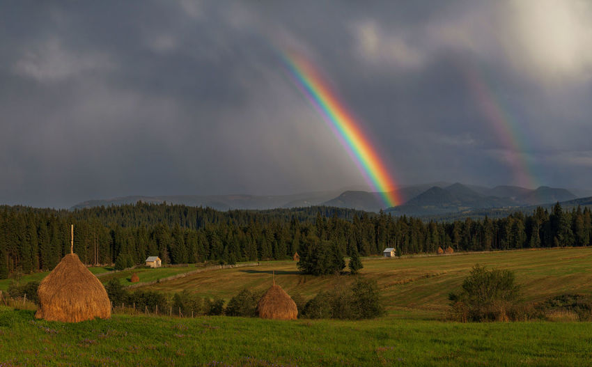 Rainbows from Bucovina, Romania. Beauty In Nature Cloud - Sky Day Double Rainbow Field Grass Landscape Mountain Multi Colored Nature No People Outdoors Rainbow Scenics Sky Tranquil Scene Tranquility Tree
