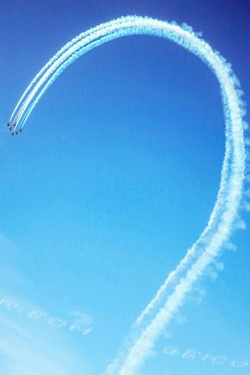 The Blue Angels. Enjoying The View San Francisco Fresh 3 Getting Inspired Urban Nature