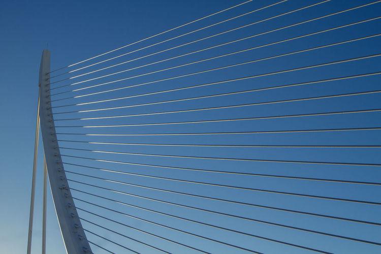 Calatrava Lines SPAIN Shapes València Architecture Blue Built Structure Day Minimal No People Outdoors Simplicity Sky