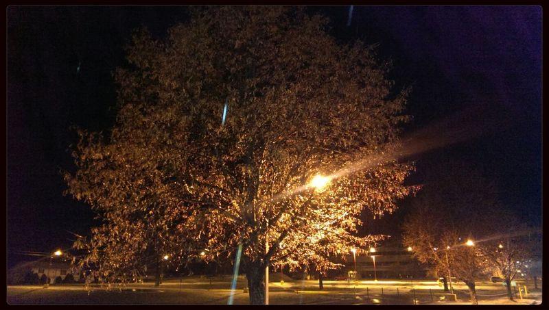 Snow Ice Wintertime