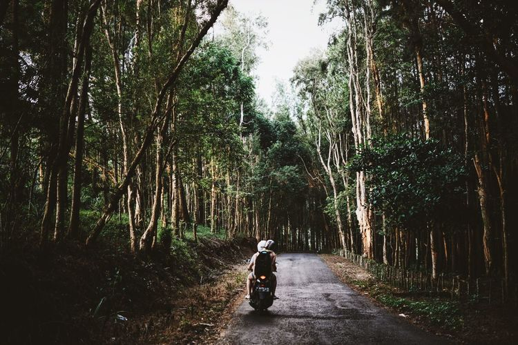 The longing you seek is not behind you. It is in front of you. - Maz Kanata 🚲💨 Scooter Road Roadtrip Street Forest Traveling Motorbike INDONESIA Java People Riding My Motorcycle Darkness And Light