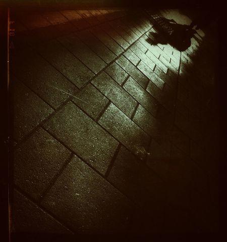 Notes From The Underground Urban Landscape Light And Dark Lost? Het Zelf Op!