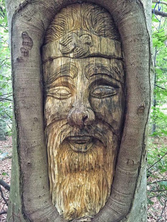 Check This Out Taking Photos Nature Taking Photos Walking Around Bäume Trees Carving In Wood Carving