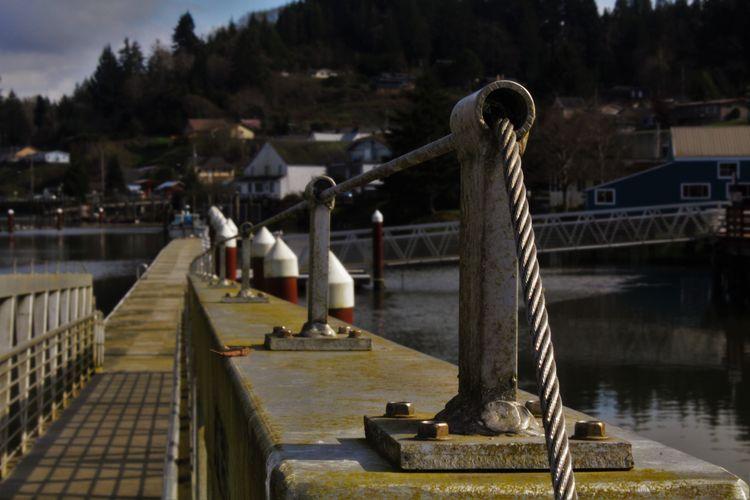 Narrow Pathway Along The River