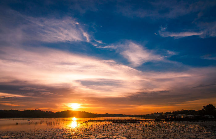 Beautiful view from my house Beauty In Nature Bestshot Cloud - Sky Day Eeyem Photography Forsell Freelancephotographer Hsphoto Idyllic Lake Landscape Nature No People Orange Color Reflection Scenics Sell Silhouette Sky Sun Sunset Sunset_collection Tranquil Scene Tranquility Tree
