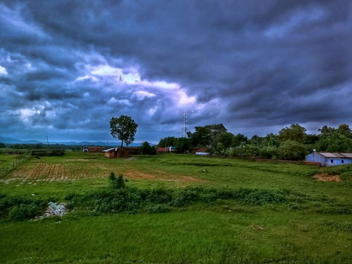 Field Landscape Grass Beauty In Nature Nature Cloud - Sky Tranquility No People Scenics Rice Paddy Outdoors Tree Sky Agriculture Jharkhand Indiapics Indiapictures Monsoonseason Rainy Days Rural India India Pictures Greenery Nature Photography