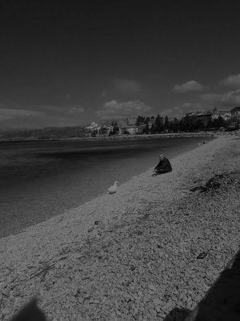 Türkiye Turkey Göl Eğirdir Eğirdirgölü ısparta Yalnızlık Ordek Beach Sand Sea Nature Outdoors Landscape Sky