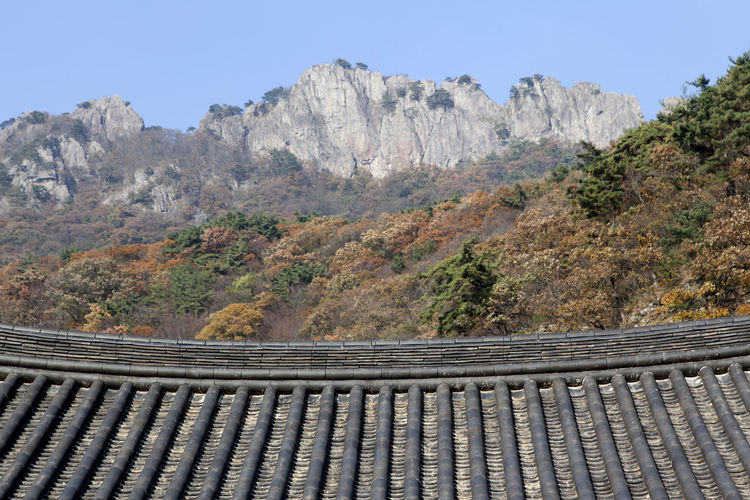 Naejangsa, a Buddhism temple and Naejangsan in Jeonbuk, South Korea Architecture Buddhism Temple Buddhism Day Eaves Mountain Outdoors Sky Temple