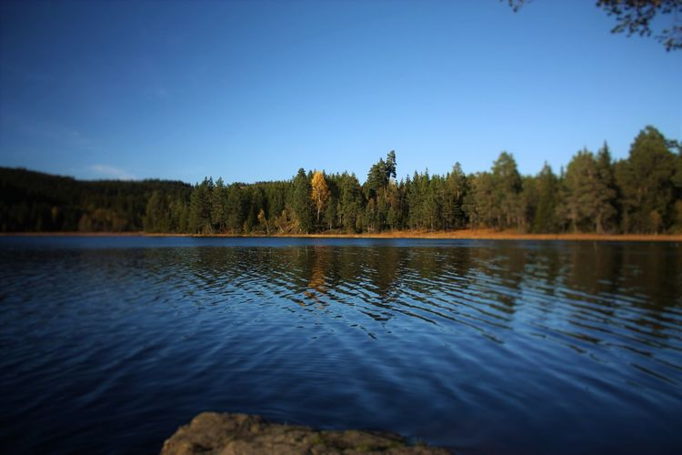 Beauty In Nature Clear Sky Heimdal Lake Lakeside Lauglovannet Nature Norway Ringvål Trondheim Water Surface