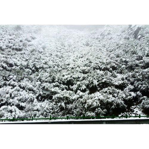 ❄❄❄⛄50 min parado no marão⛄❄❄❄ Snow Portugal Marao Neve White Nature Cold Road Natureza Trásosmontes Winter TheWinterIsComing Caineve