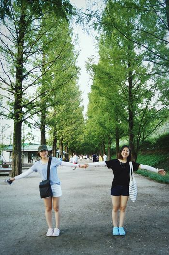 Traveling With My Friend in Damyang Beautiful Trees Metasequoia I've Been There Focused On Back People