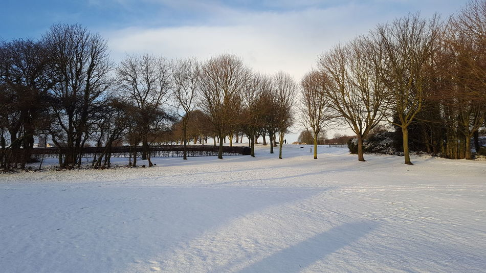 Snow field White Scotland Wintertime Escocia Snowyy White Snow Winter Cold Temperature Tree No People Nature Outdoors Tranquility Rural Scene Landscape Beauty In Nature Sky Day Snowing Scenics