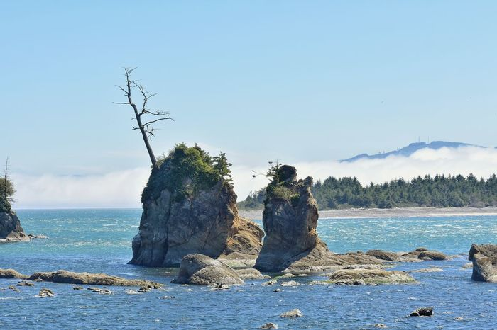 small islands Ineffable Life Photography And Art Island Water Sea Tree Beach Wave Bird Sky Horizon Over Water Rock Formation The Great Outdoors - 2018 EyeEm Awards
