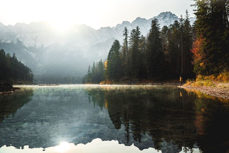 Réflective l'âne Eibsee Water Tree Plant Beauty In Nature Scenics - Nature Tranquility Nature Non-urban Scene Idyllic Outdoors Forest