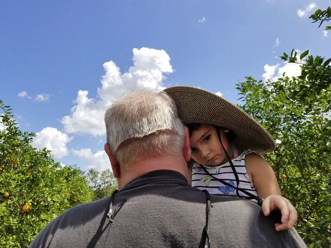 A toddler girl is being consoled by her grandfather who carries her through an orange grove Bonding Nature Positive Emotion Portrait Lifestyles Hat Cloud - Sky Two People Real People Peaking Out From Behind Sky Love Trust Toddler  Granddaughter Grandfather Grandparents Headshot Togetherness Outdoors Mature Men Senior