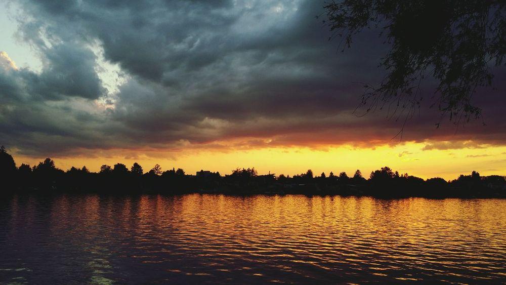 Sunset N°2 Sunset Lake Trees Capturing Freedom
