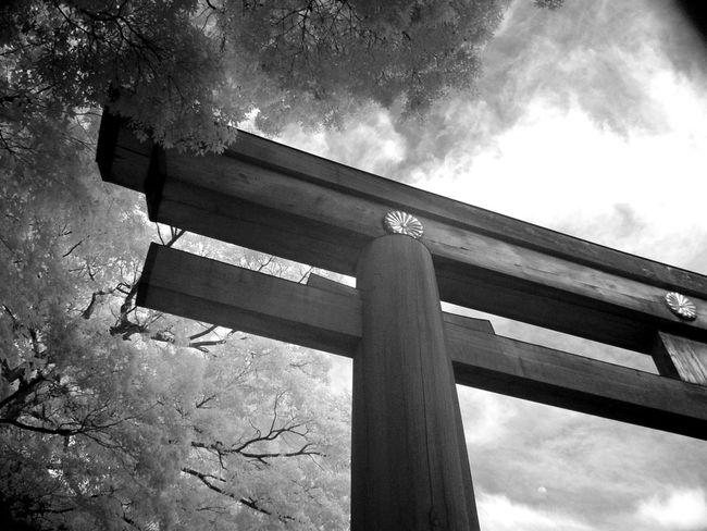 Black And White EyeEm Best Shots IR Shot The Week Of Eyeem The Week On Eyem Ultimate Japan