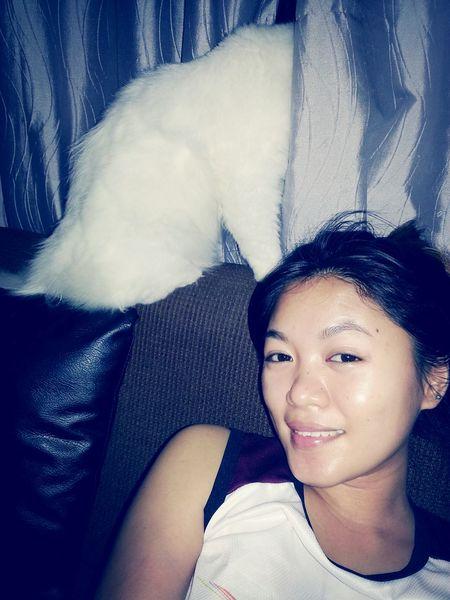 Selfie and back shot. Lol! Persiancat White Cat Big Cat
