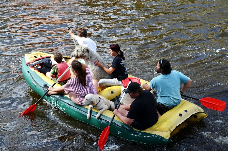 What I Value Family that sticks together at all times :) boat rafting Dogs river Taken in the Czech Republic What I Value Family Boat Rafting Dogs River People Water Sport Sports FreeTime Fun Adapted To The City Connected By Travel Second Acts