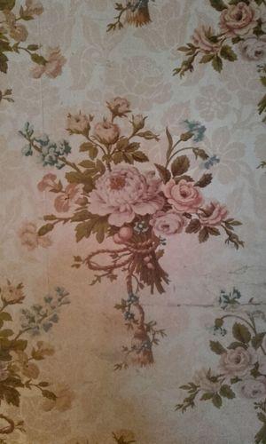 flower wallpaper Kasteel Amerongen Old Old-fashioned 17th Century Flower Paper Floral Pattern Decorative Art Pale Pink Beige Background Wallpaper Dissolving Blooming Flower Head
