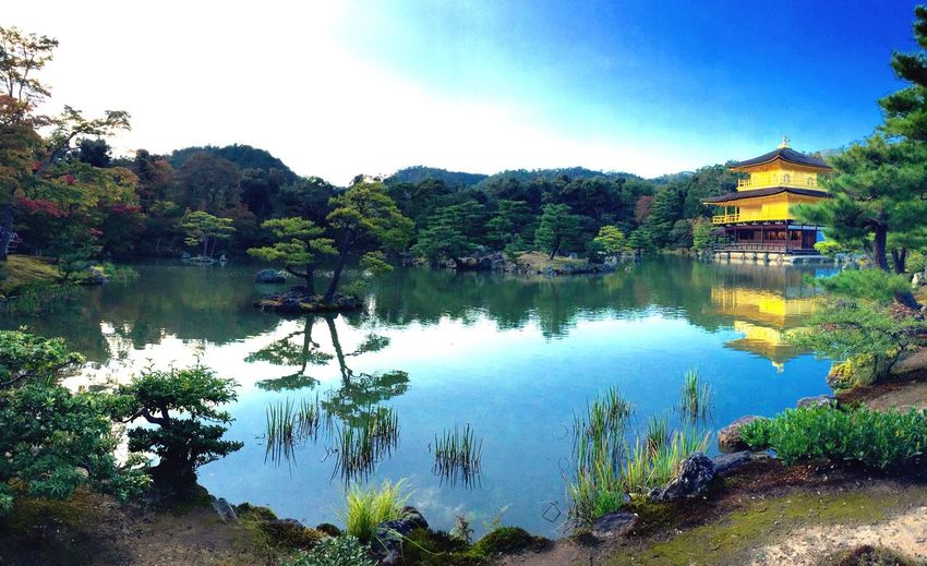 43 Golden Moments le temple d'or ( Kyoto ) Horizon Over Water Tranquility Reflection Tranquil Scene Sky Water Tree Japonesegarden