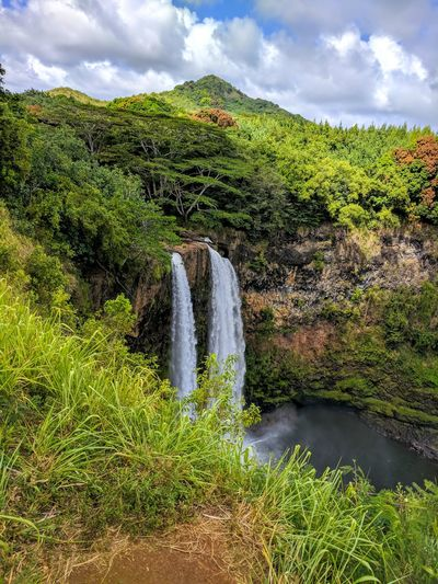 Don't Go Chasing Waterfalls Waterfalls Hawaii Hawaii Life Rainforest Kauai♡ Kauai Hawaiian Peaceful View Happy Place