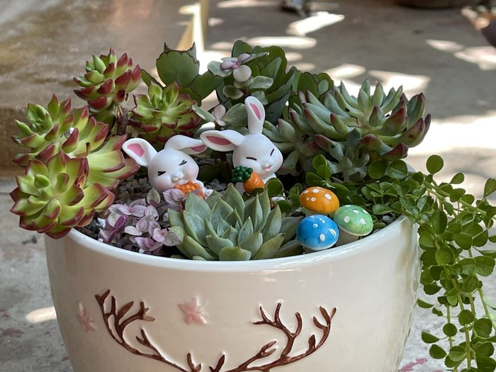 Close-up of easter eggs on plant