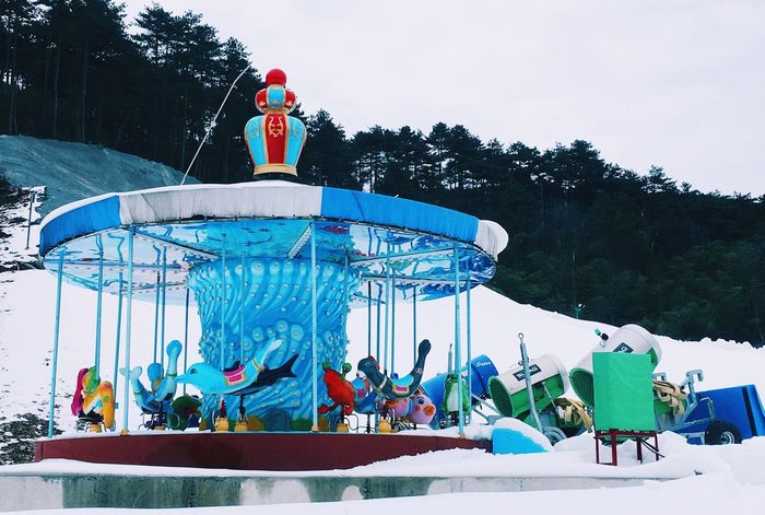 Leisure Activity Snow Day Real People Nature Group Of People Amusement Park Holiday Cold Temperature Enjoyment