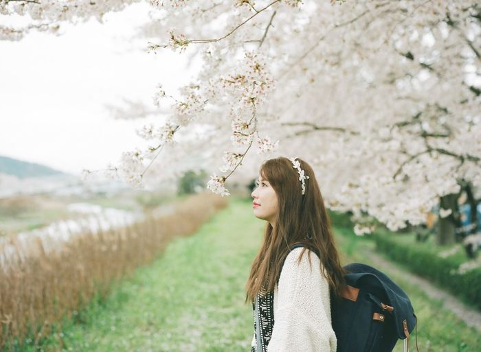Thoughtful woman standing by cherry tree in park