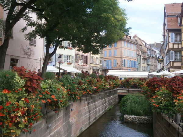 Charm and flair in Colmar, France. Alsace Building Exterior Charm Colmar Flair Flowers France Outdoors Travel Destinations