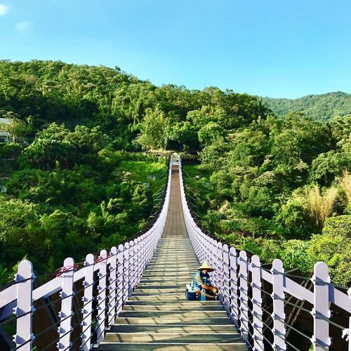 Tree Outdoors Real People Day Tranquil Scene Full Length Growth Footbridge Tranquility The Way Forward Beauty In Nature Nature Mountain Clear Sky Sky Men Women Architecture People EyeEmNewHere EyeEmNewHere