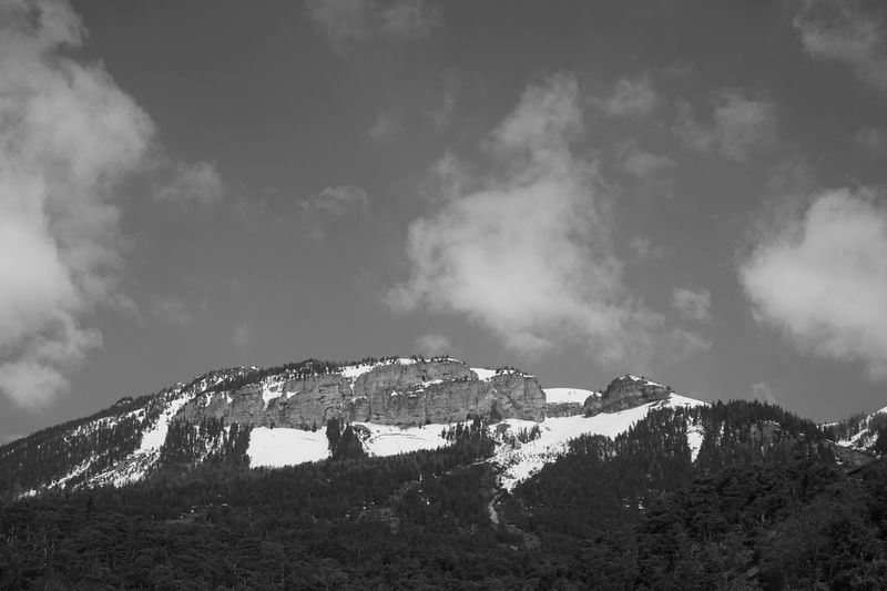 Black & White Black And White Blackandwhite Varneralp Varen Wallis Switzerland Sky Low Angle View Cloud - Sky No People Day Outdoors Nature Tree Beauty In Nature