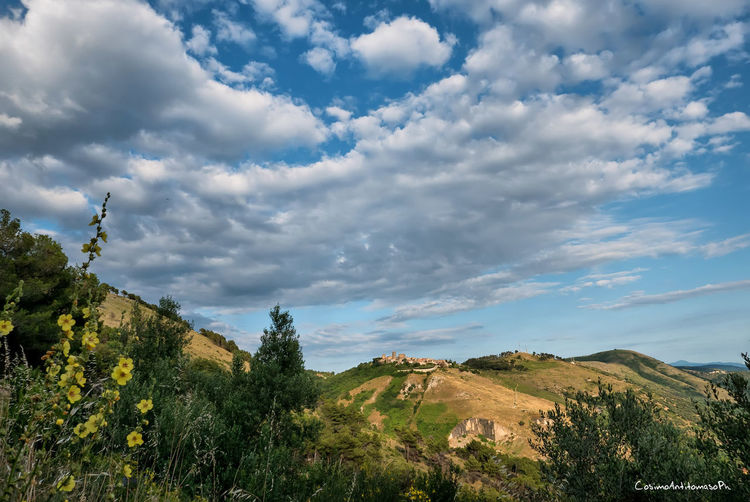 Casertavecchia Beauty In Nature Cloud - Sky Day Environment Growth Idyllic Land Landscape Low Angle View Mountain Nature No People Non-urban Scene Outdoors Plant Scenics - Nature Sky Tranquil Scene Tranquility Tree