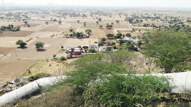 Bushes and houses High Angle View Field Outdoors Day No People Landscape Bushes Village View Village Houses
