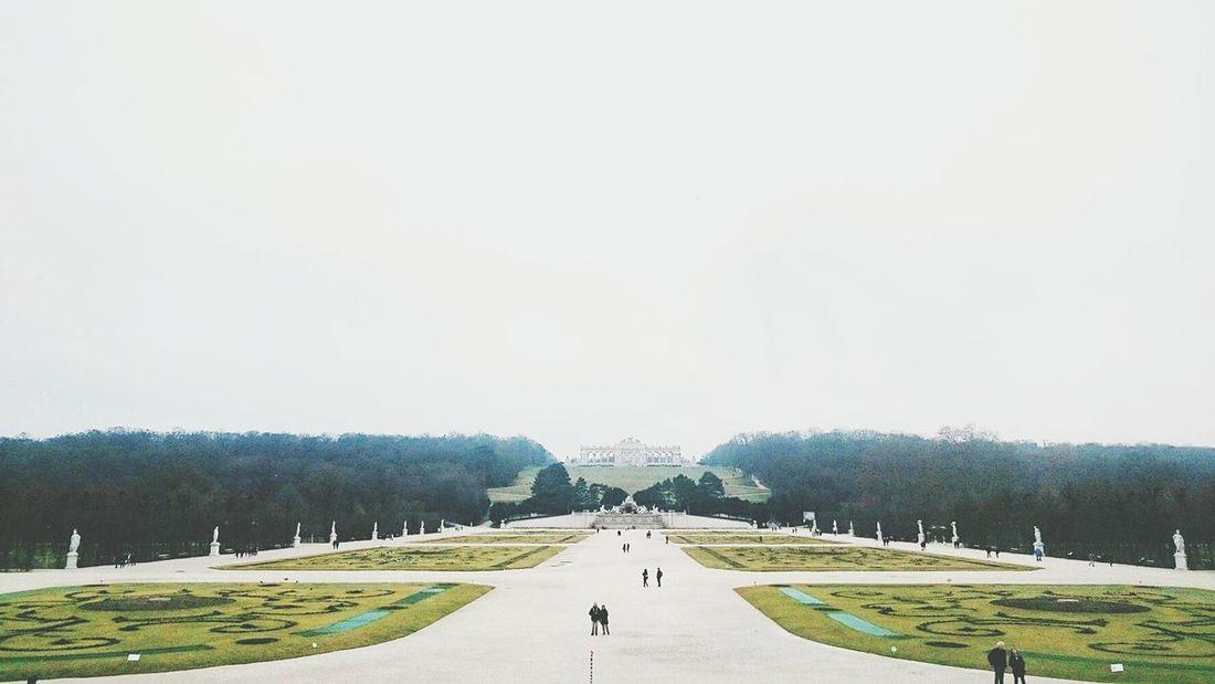 Tha park at Schönbrunn Palace - Vienna Artphotography Pastel Power I Love Art Eurotrip Picoftheday Austria Vienna Garden View Amazing Gorgeous Culture
