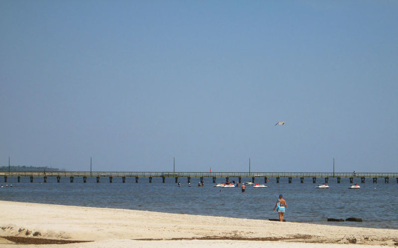 Going around the beaches in Biloxi and it was an awesome trip. Biloxi Mississippi Bridge Over Water Jet Skies White Sandy Beach Beach Beaches Beaches Of Eyeem Biloxi Biloxi Beach Clear Sky Day Horizon Over Water Leisure Activity Leisure Time Outdoors People Real People Sand Scenics Sea Sky Tourist Destination Vacations Water White Sandy Beaches