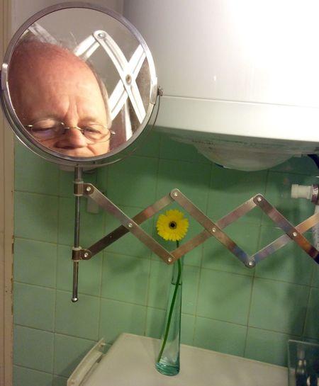 Selfie with Flower Selfie Flower Interior Mirror Raster