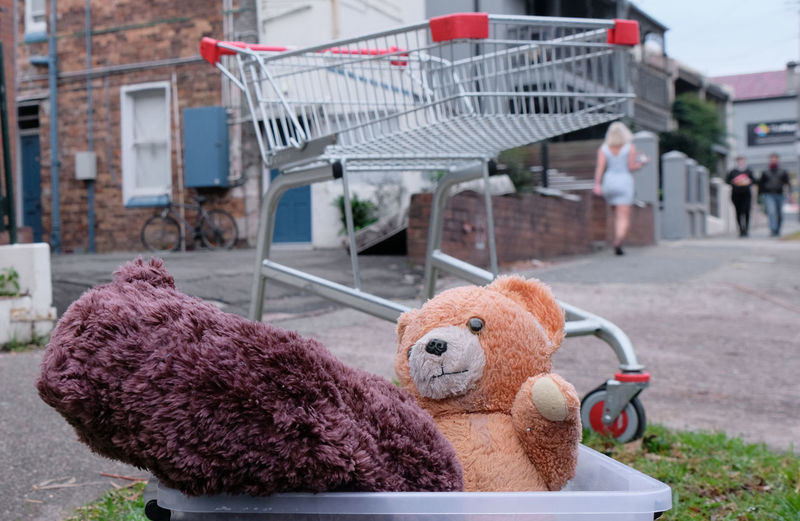 Sydney New South Wales  Stuffed Toy Teddy Bear Toy Day Focus On Foreground Close-up Incidental People Discarded Lost Trolley Leichhardt Dumped Lost Childhood Unwanted