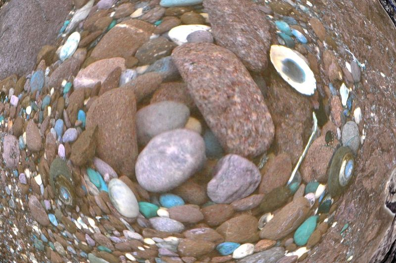 Abundance Animal Shell Animal Themes Beach Close-up Day Fish Eye Sho High Angle View Large Group Of Objects Nature No People Outdoors Pebble Rock Rock - Object Rocks In Water Sand Sea Life Seashell Shore Stone Stone - Object Water