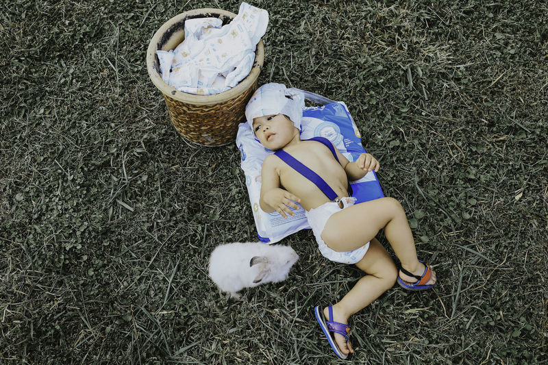 High angle view of boy lying down by rabbit on land