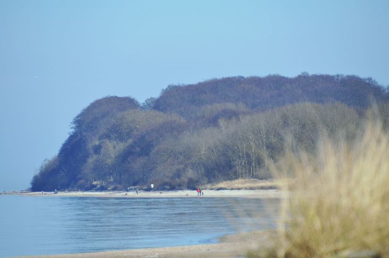 Water Outdoors Sky Nature Day Tree Nature Reserve Landscape Kalkhorst Baltic Sea Real People People Beach Sea