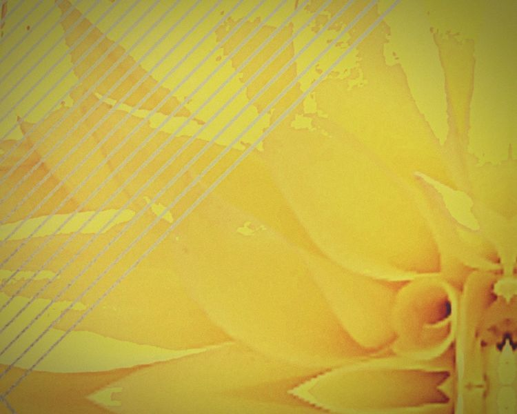 yellowing Abstract Pattern Backgrounds Flower Art Pyschedelic Yellow