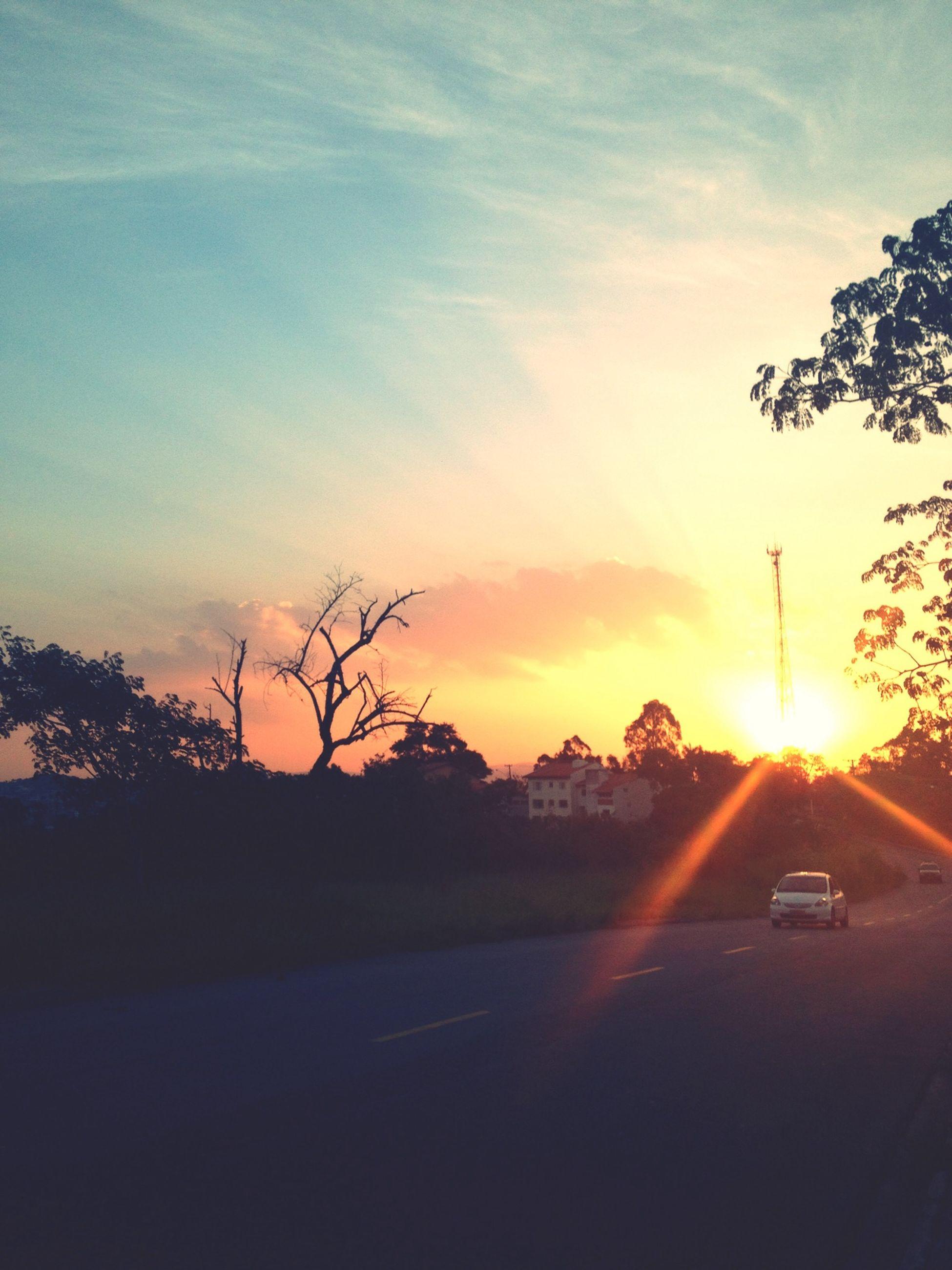 sunset, transportation, car, sun, land vehicle, road, tree, mode of transport, sky, sunlight, silhouette, sunbeam, street, cloud - sky, orange color, the way forward, lens flare, nature, scenics, beauty in nature