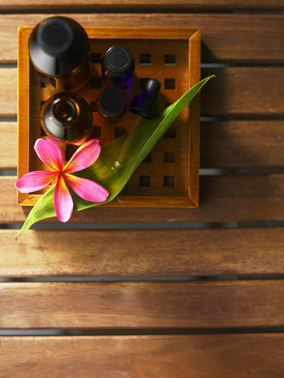 aromatherapy bottles with flower Frangipani Pink Alternative Medicine Aroma Aroma Therapy Bottles Close-up Day Essential Oils Flower Flower Head Freshness Indoors  Massage Oil Nature No People Pink Flower Relax Scented Spa Wood - Material