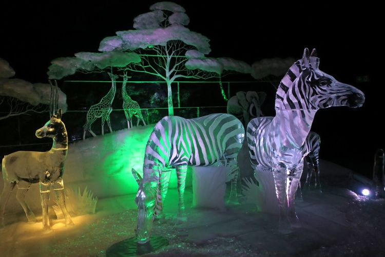 View of illuminated horse sculpture at night