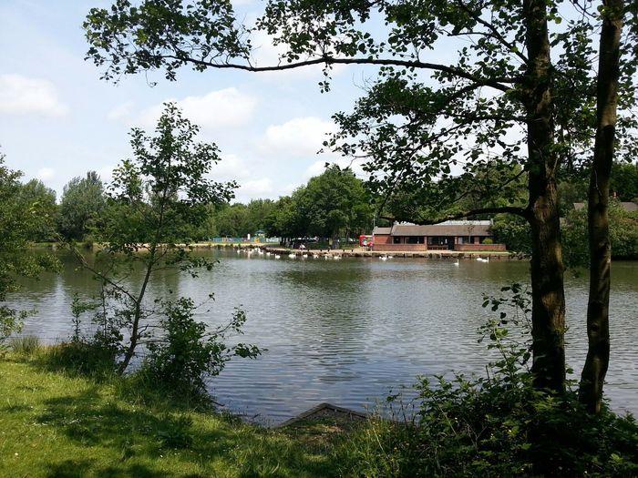 The Lake Walking Around