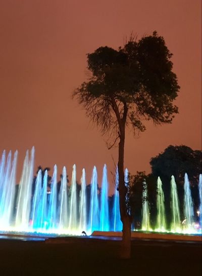 Tree Water Night Travel Destinations Single Tree Multi Colored Spraying Splashing Illuminated Park Outdoors Fountain Tree Sillouettes Lima,Perú City Check This Out!