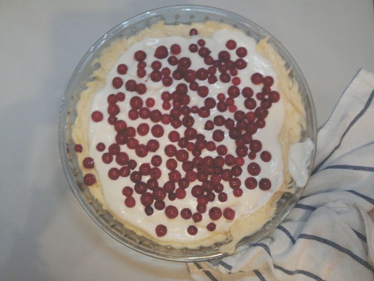Enjoying Life Redcurrant Cake Dessert